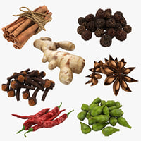 3D spices set model