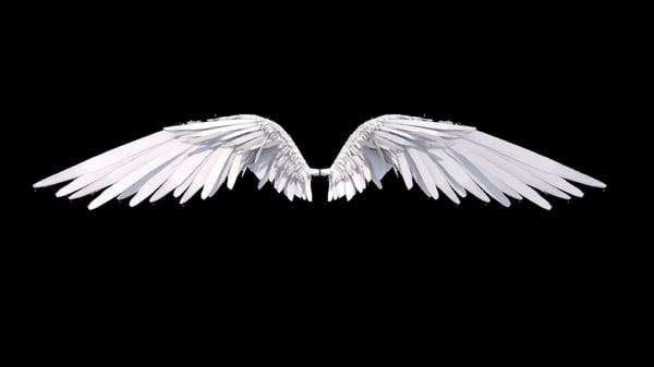 wings angel rigged 3D model