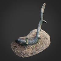 3D nature forest roots 004 model