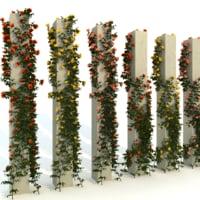column roses 3D model