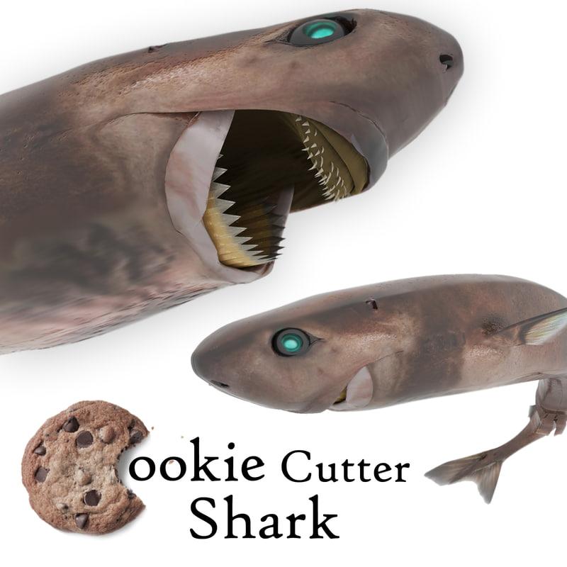 cookie cutter shark 3D model