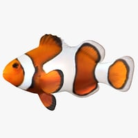 clownfish scanline 3D