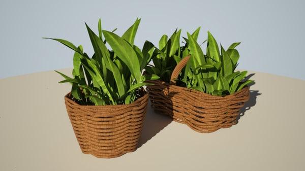 flowers basket model