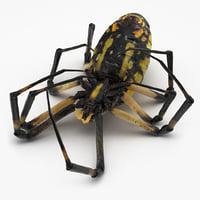 dead corn spider 3D model