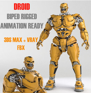 3D humanoid robot rigged