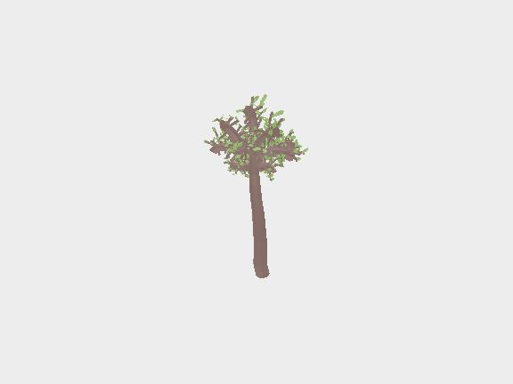 3D tree leafs