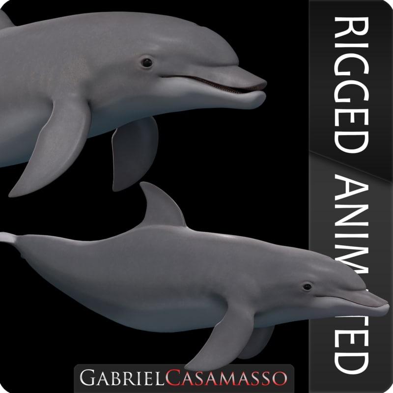 dolphin tursiops truncatus 3D