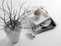 morning composition magazines coffee 3D model