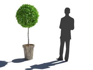 tree bush 3D model