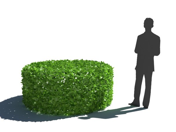 3D bush hedge model
