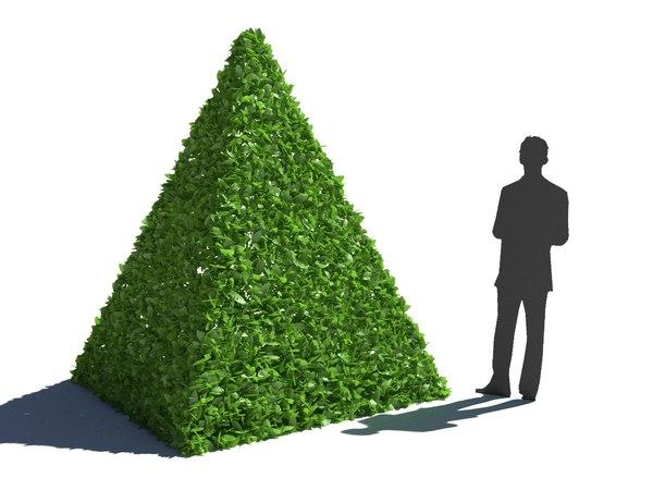 bush hedge model
