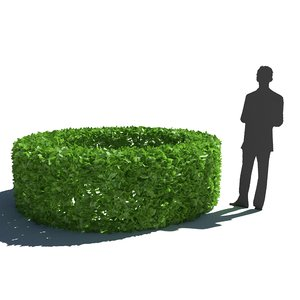 3D bush hedge