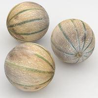 3D model melon charentais