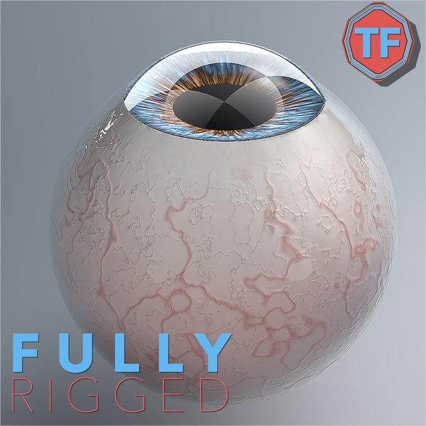 3D realist human eye rig model