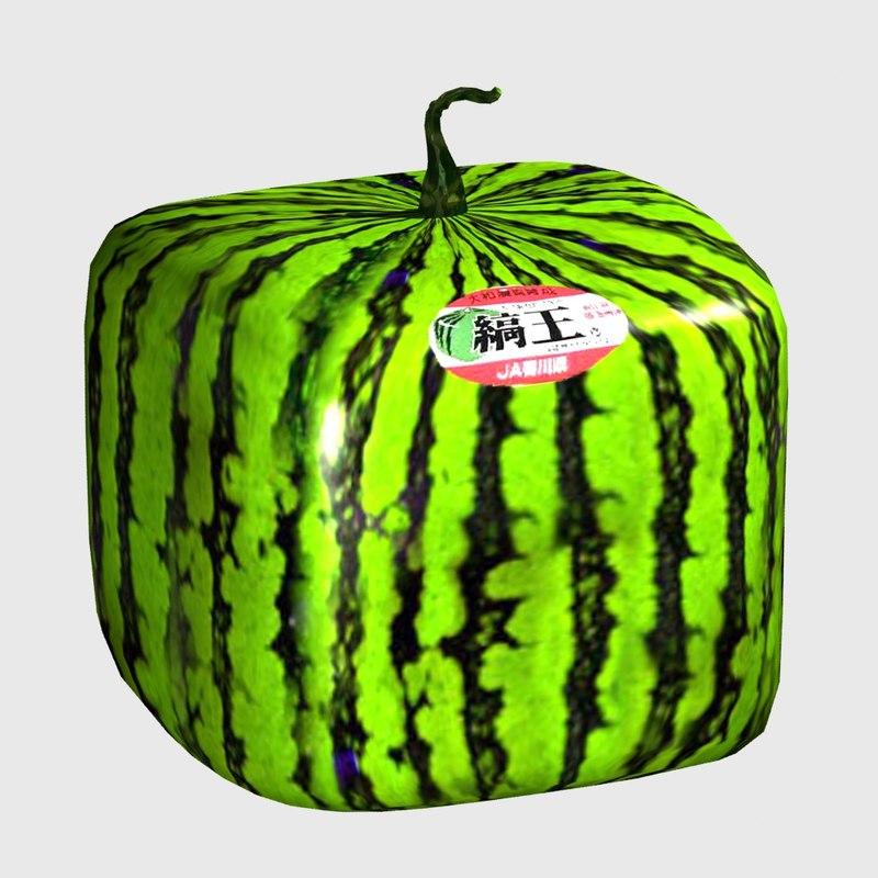 japanese water melon 3D