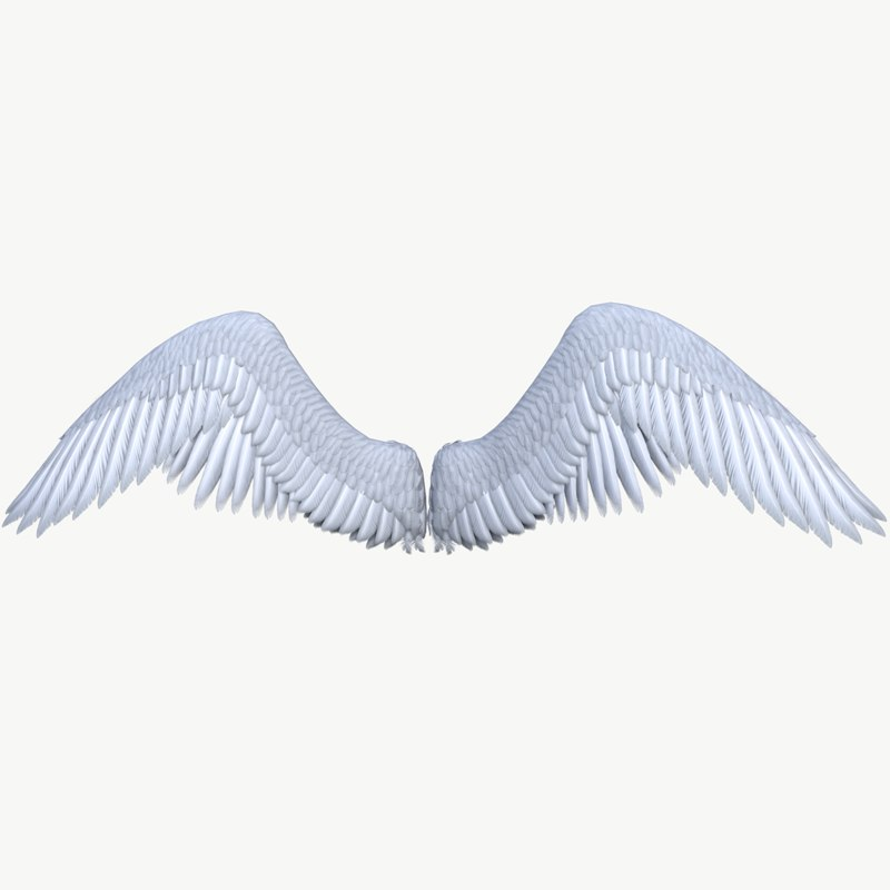 3D angel wing