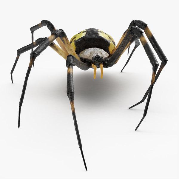 mckinley spider 3D