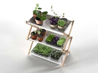 3D creative plant shelf model