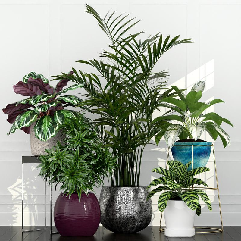 plants 54 3D model