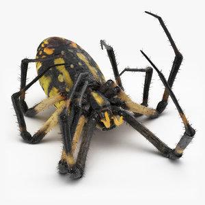 3D dead corn spider fur