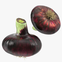 red onion 3D model