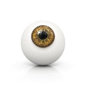 3D brown human eye ball