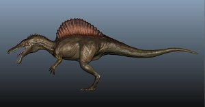 3D spinosaurus jurassic model