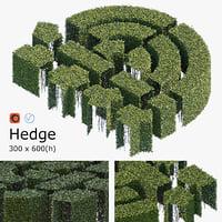 3D hedge h model