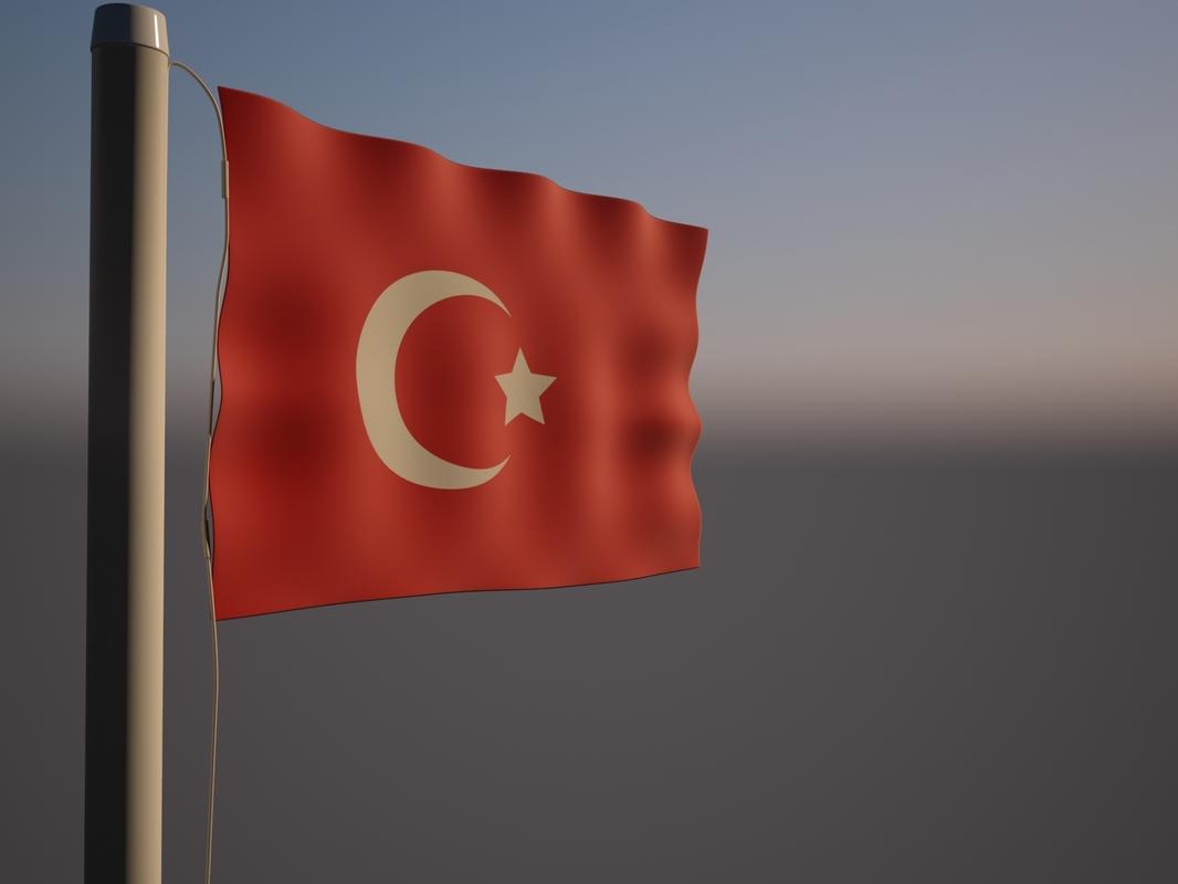 3D turkey flag