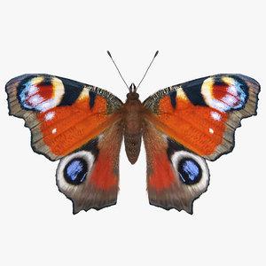 aglais io butterfly fur 3D