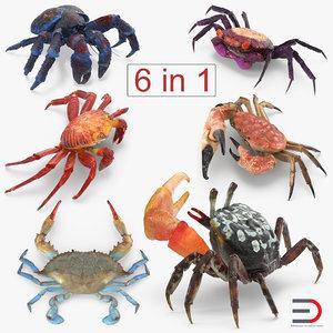 3D model crabs 2