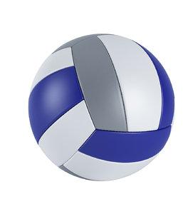 3D volley ball