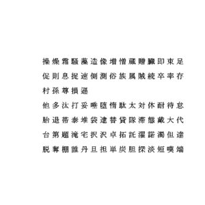 chinese ms pmincho font 3D