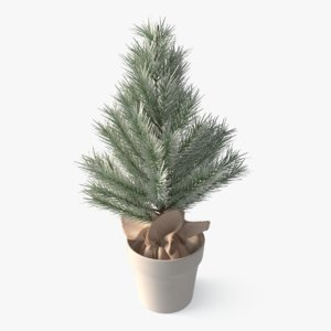 decorative spruce 3D model