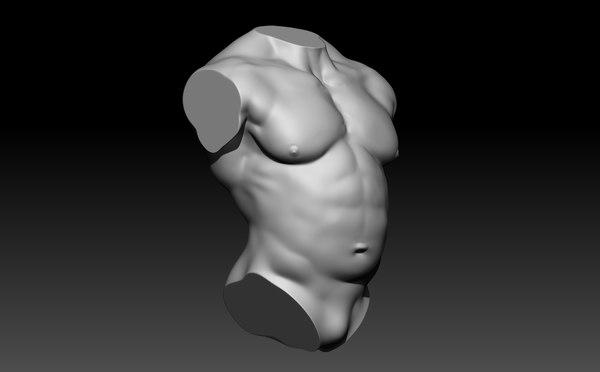 male torso 3D model