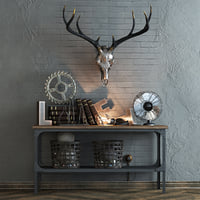 Decorative set with a deer skull.