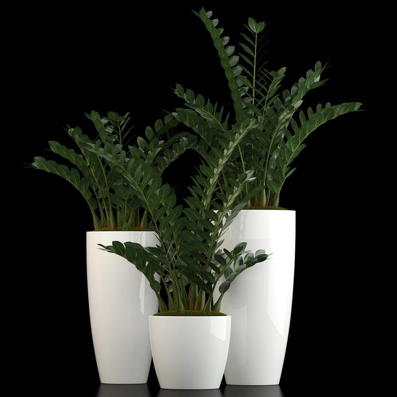 3D plants 56