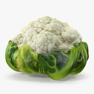 3D cauliflower model