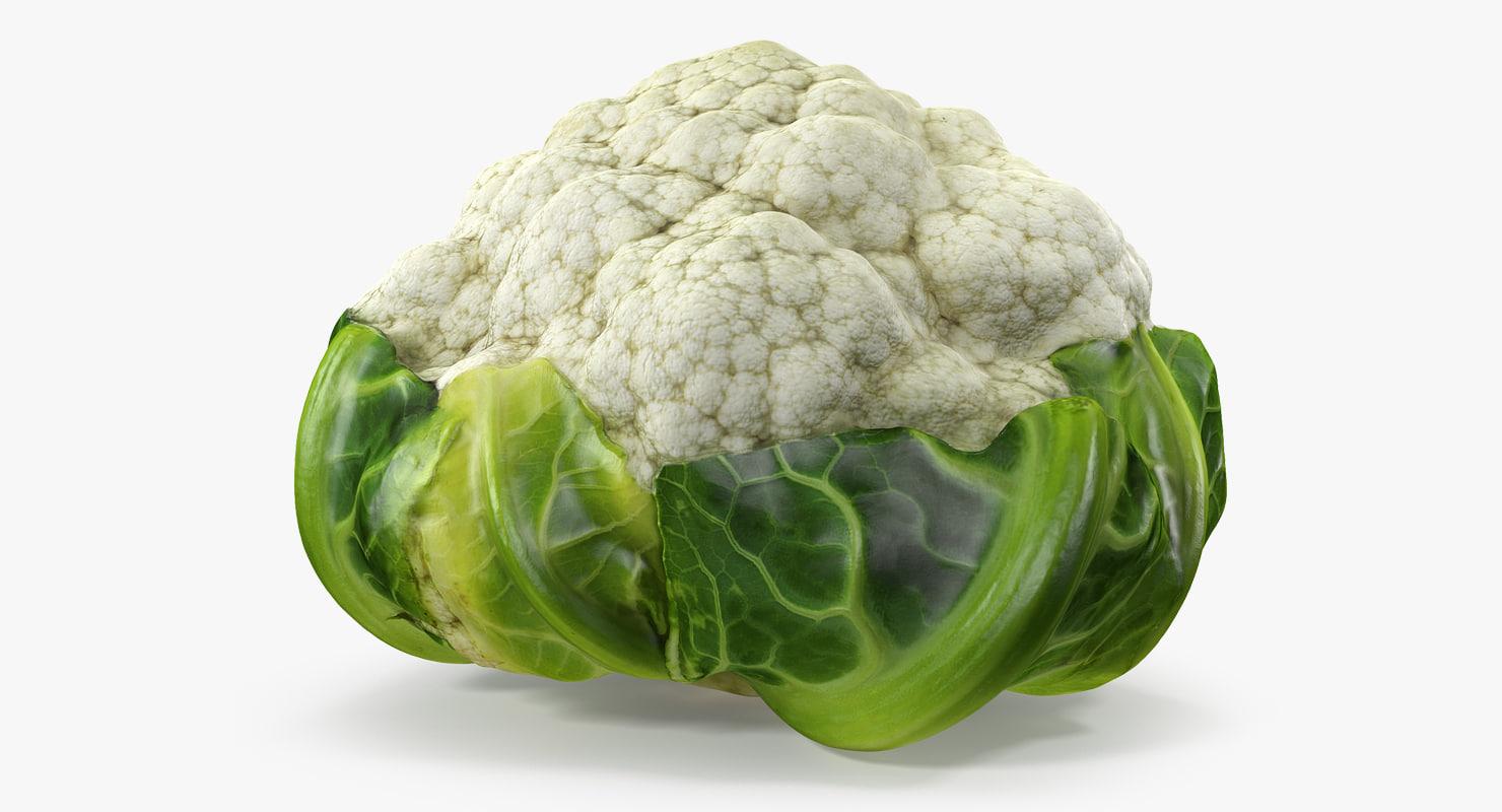 3D cauliflower model