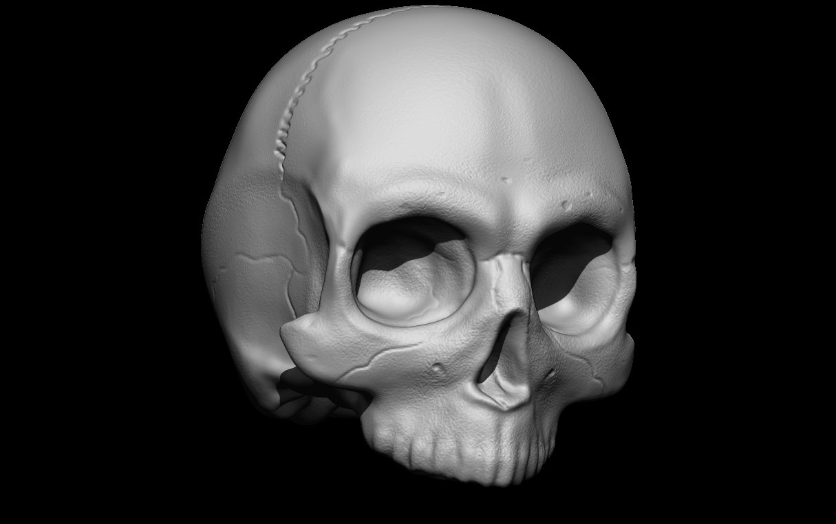 3D scull