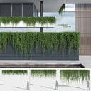 3D model climbing plants 2