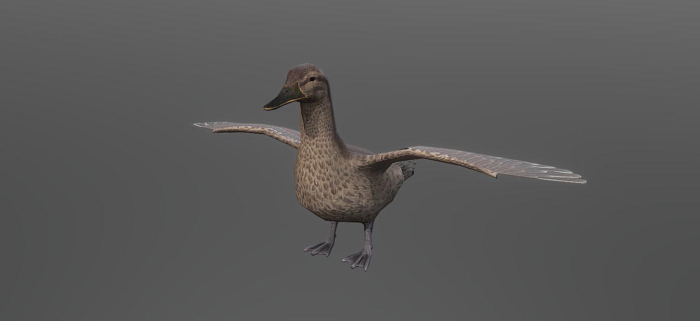 duck 3D model