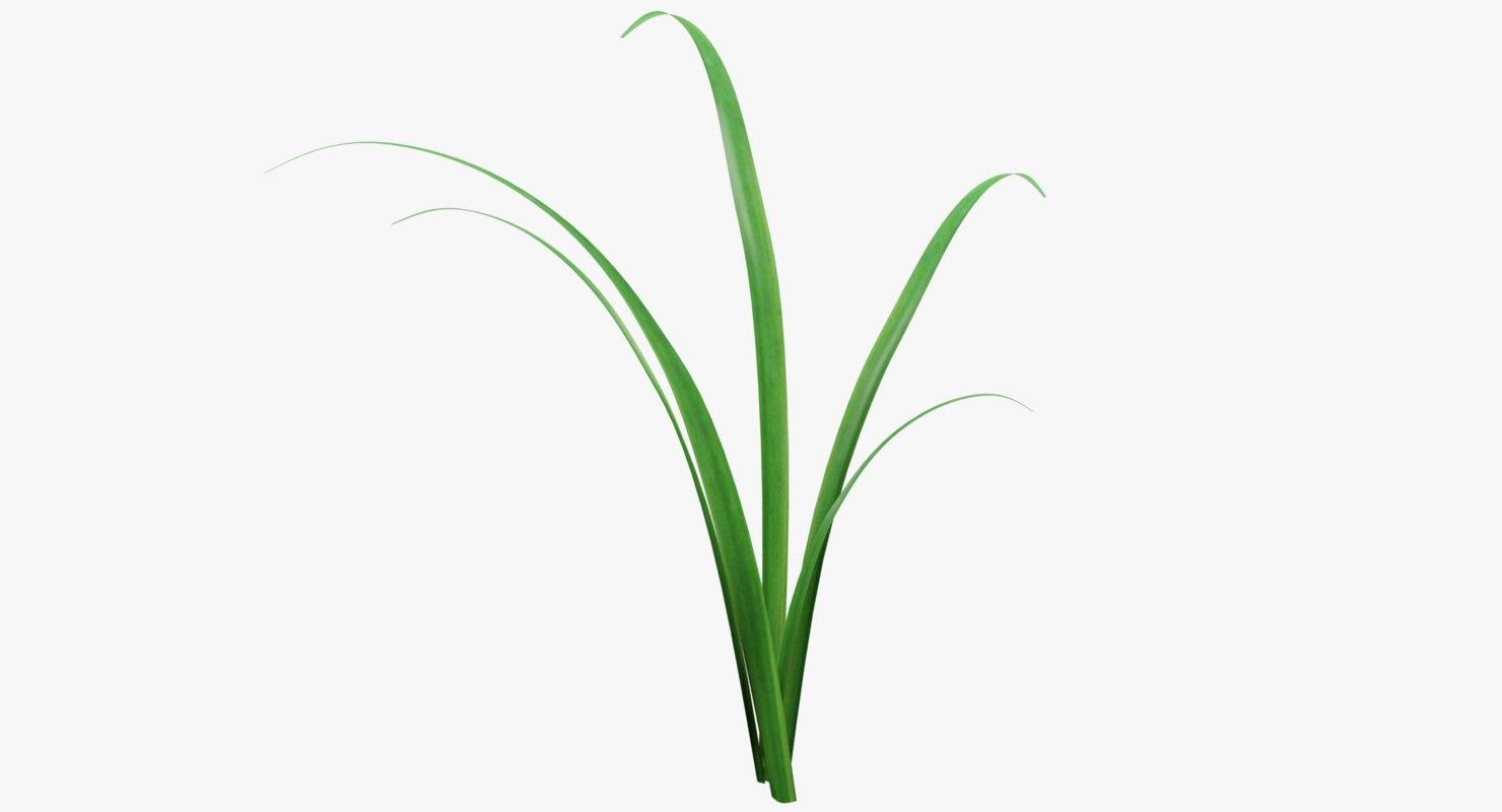 3D simple grass model