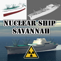 ns savannah 3D model