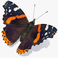 vanessa atalanta butterfly fur color 3D model