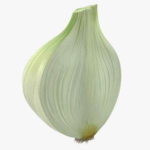 3D half onion