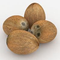 coconut coco 3D