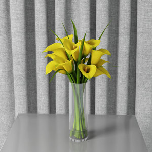 yellow calla lilies 3D model