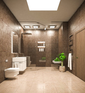 3D bath bathroom room