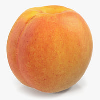 3D apricot object realistic model
